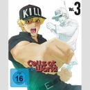 Cells at Work! Blu Ray+DVD vol. 3