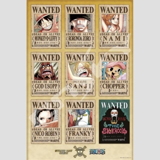 One Piece New Wanted Posters Puzzle