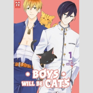 Boys will be Cats Nr. 1